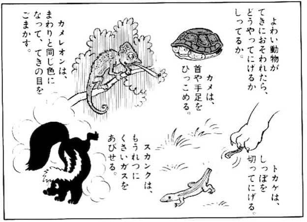 動物の逃走本能